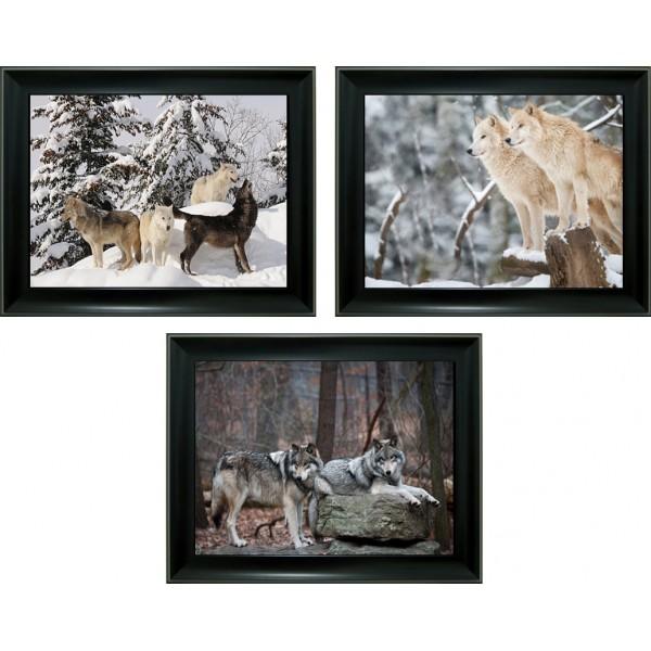 374 Wolf 3D Triple Image