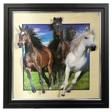 403 Horse 5d Lenticular Picture Frame 18x18
