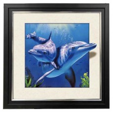 406 Dolphin 5d Lenticular Picture Frame 18x18