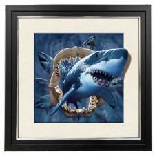 409 Shark 5d Lenticular Picture Frame 18x18
