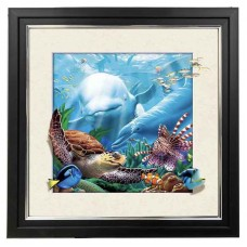 410 Dolphin 5d Lenticular Picture Frame 18x18