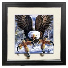 416 Eagle claw 5d Lenticular Picture Frame 18x18