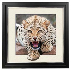 8420 LED Lighted Leopard  5d Lenticular Picture Frame 18x18