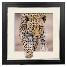 422 Jaguar 5d Lenticular Picture Frame 18x18