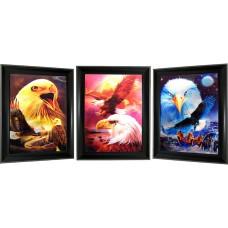 310 Bald Eagle 3D Lencticular Picture