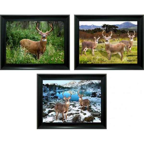 312 Deer 3D Lencticular Picture
