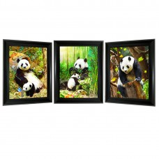 319 Panda Bear 3D Lencticular Picture