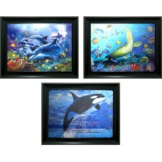 325 Dolphin Triple Image