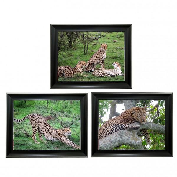 391 Leopard Tripple 3D Picture