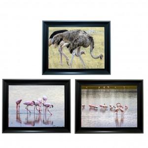 396 Flamingo bird Tripple 3D Picture