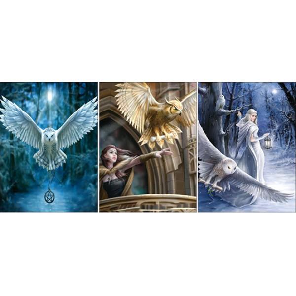 379 Mystical Owl & Sorcerer Triple Image