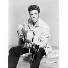 "26264 Elvis Presley 18""x26"" Oil Canvas"