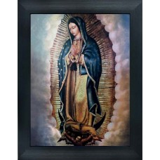402000 Guadalupe 3d picture size 18x25