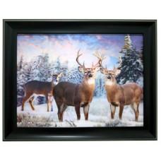 258  Deer 3D Picture
