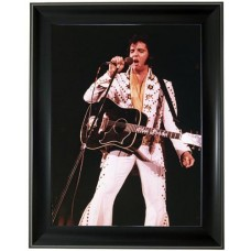264 Elvis Presley 3D Picture