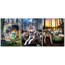 8302 Wolf  Tripple 3D Picture