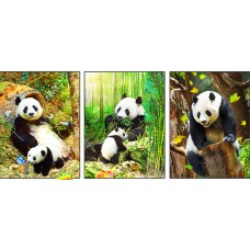 8319 LED Panda Bear 3D Picture