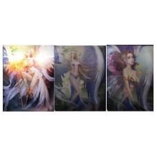 366 Fairies 3D Triple Image