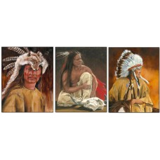 376  Indian chief 3D Lencticular Picture