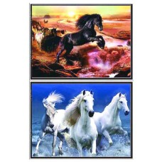 402022B Horse 3d picture size 18x25