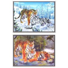 402171B Twin tiger  3d picture 18x25