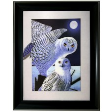 287 Owl 5D Picture Size 14x18