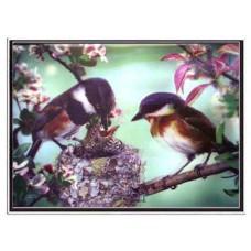 "6014 Bird 3D Lenticular w/ frame  size 27"" x 35"""