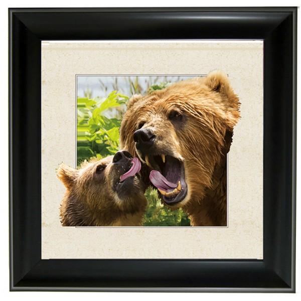 """604 Bear 3D Lenticular w/ frame  size 28"""" x 28"""""""