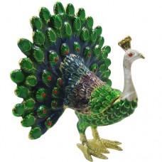 JF1921 Peacock